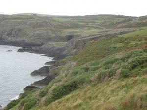 Ordovician slates near Carmel Head
